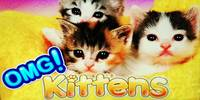 Free OMG Kittens Slot Williams Interactive