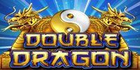 Free Double Dragon Slot Bally Interactive