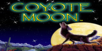 Coyote Moon IGT Slot