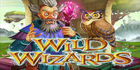 Free Wild Wizards Slot from RTG