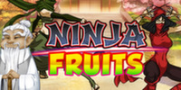 Free Ninja Fruits Slot Play'n Go